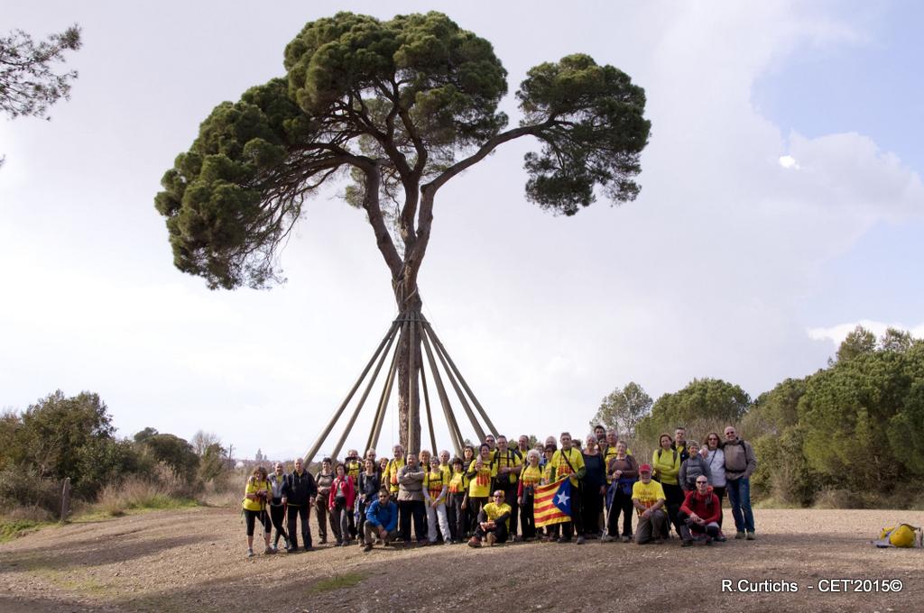3-1714 Born, Sant Cugat15,03150030